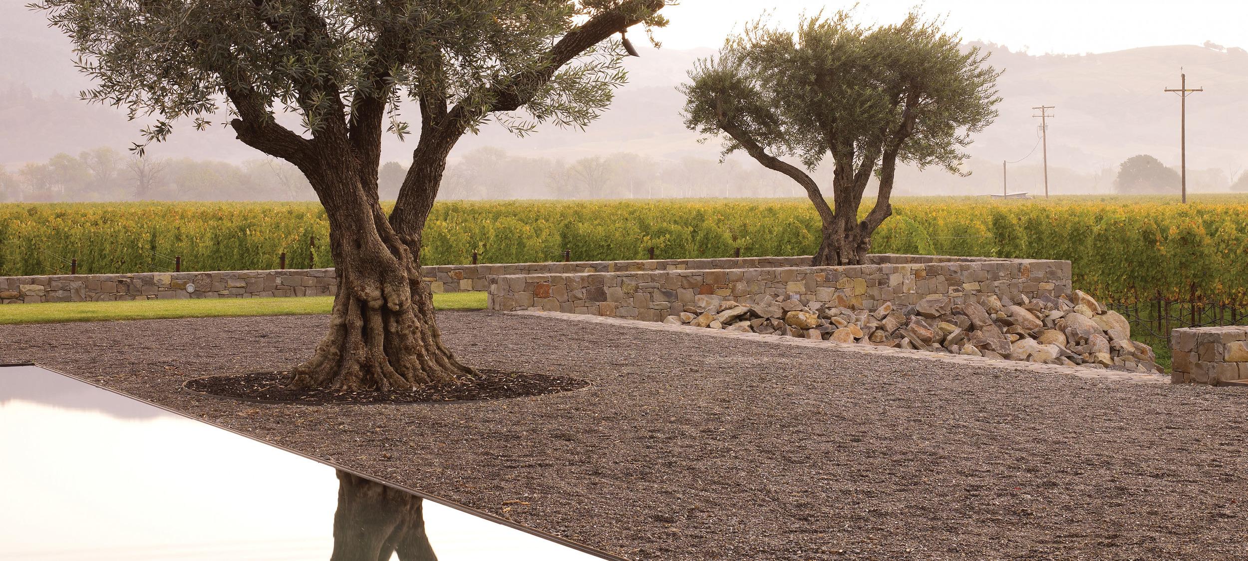Walden Studios Andrea Cochran Landscape Architecture