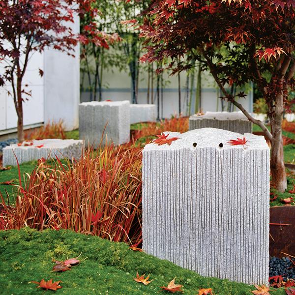 Ward Residence Palo Alto, CA