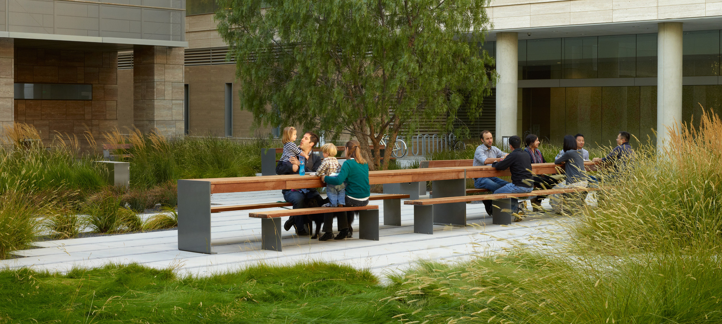 Smith Cardiovascular Research Building Andrea Cochran Landscape
