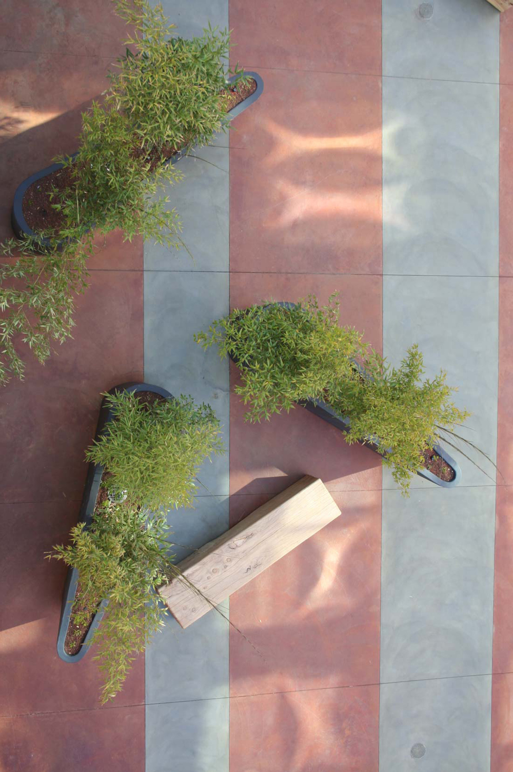View of planters from above