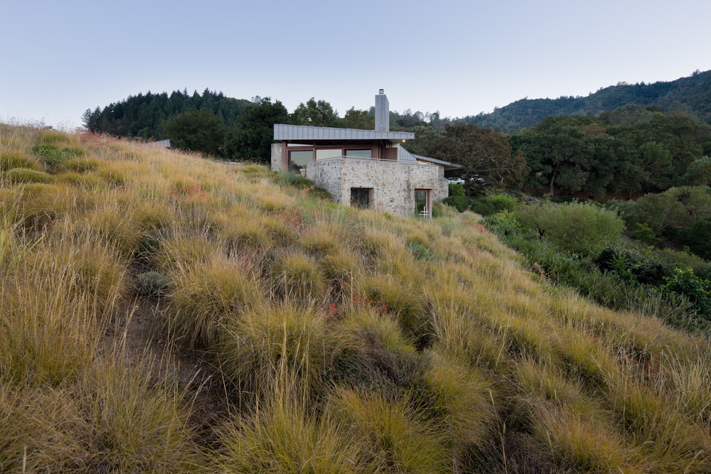 napa valley res mma 4568jpg - Minimalist Landscape Architecture
