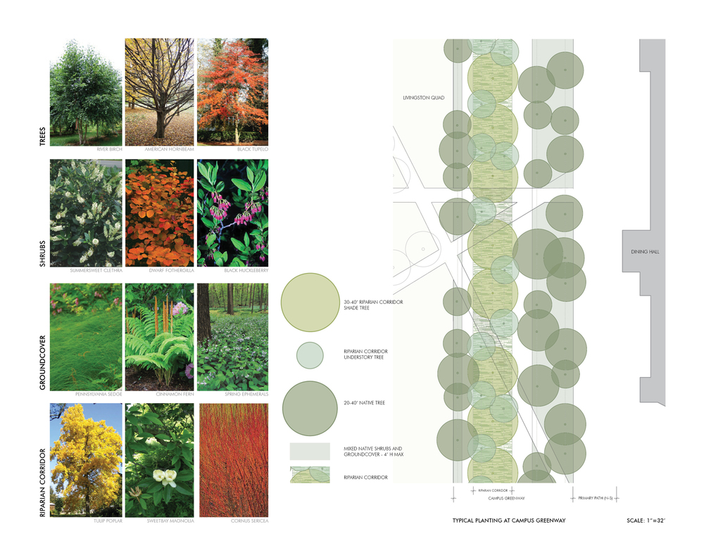 Rutgers University Livingston Campus Open Space Design Guidelines