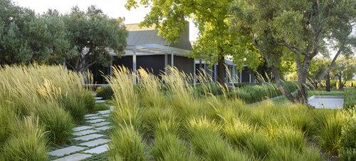 Landscape Architecture andrea cochran landscape architecture