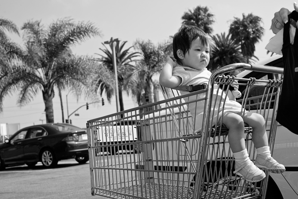 Kailee sits in the shopping cart as Karen runs errands with her.