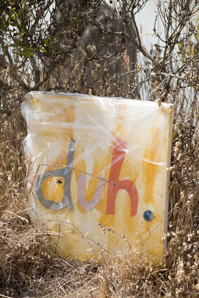 "#19, ""The."" Arcata Marsh near oxidation ponds."