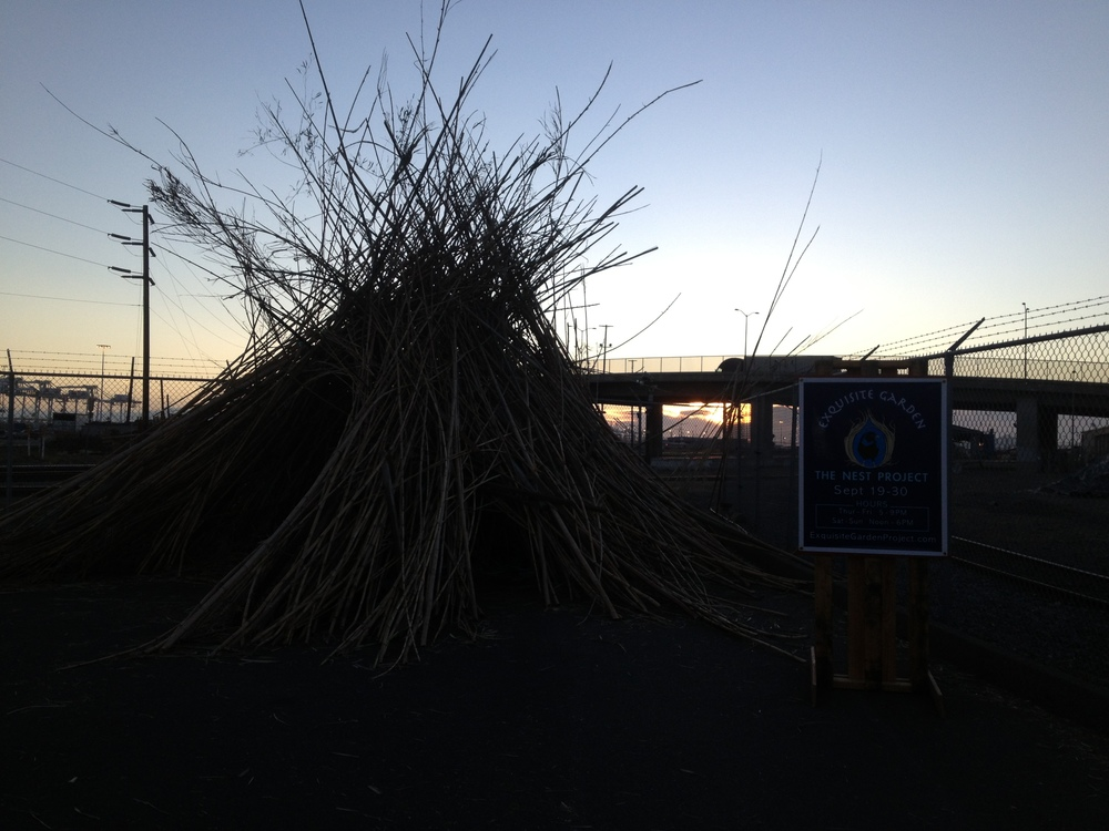 Our beautiful Oakland location, the sun sets behind the nest...