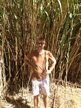 Gerhart, the giver of Arundo!