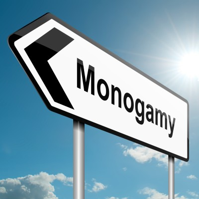 monogamy-road-sign.jpg