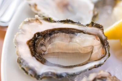 Open oyster on a platter with the appearance of the female vulva