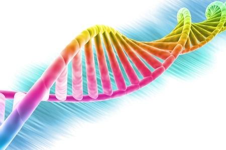 Genetics linked to homosexuality