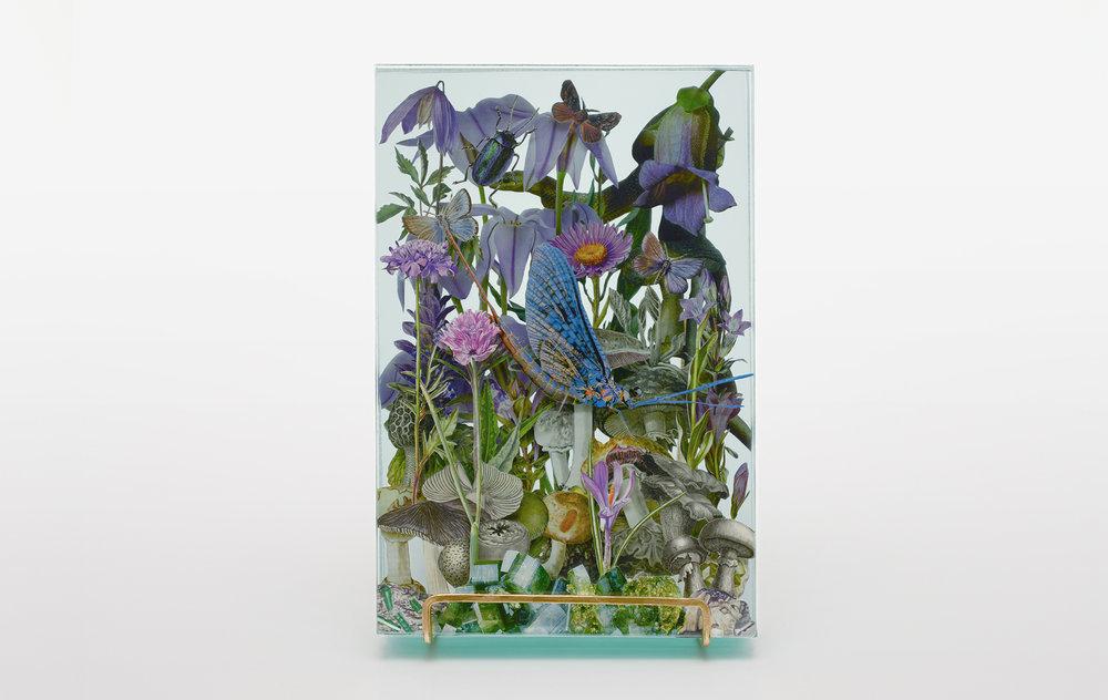 10 WEB_Ecologies_Purple_Frontal.jpg