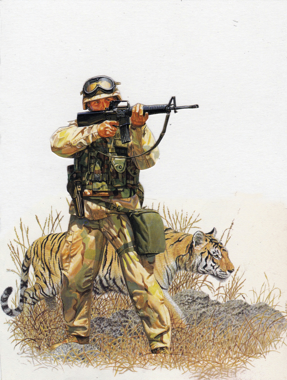 Big Cats of War illustrated 11.jpg