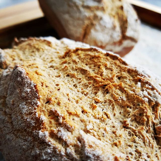 Gluten Free Millet bread...still warm! w/ @arrowheadmills Organic Millet Flour  #glutenfree #bread #vegan #gumfree #localrootschef #personalchef #foxcities #appleton #foxcities #kaukauna #wisconsin
