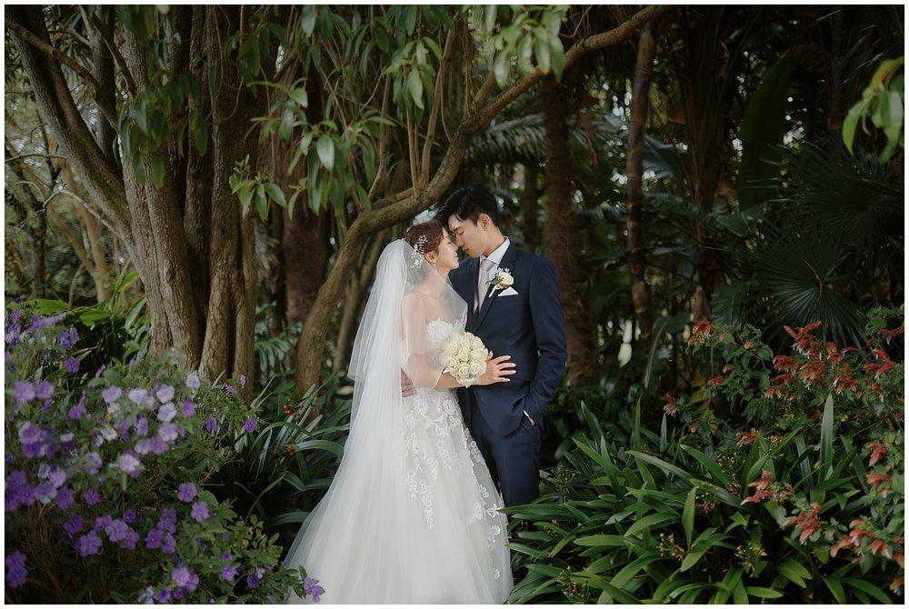 Auckland New Zealand Prewedding Photographer
