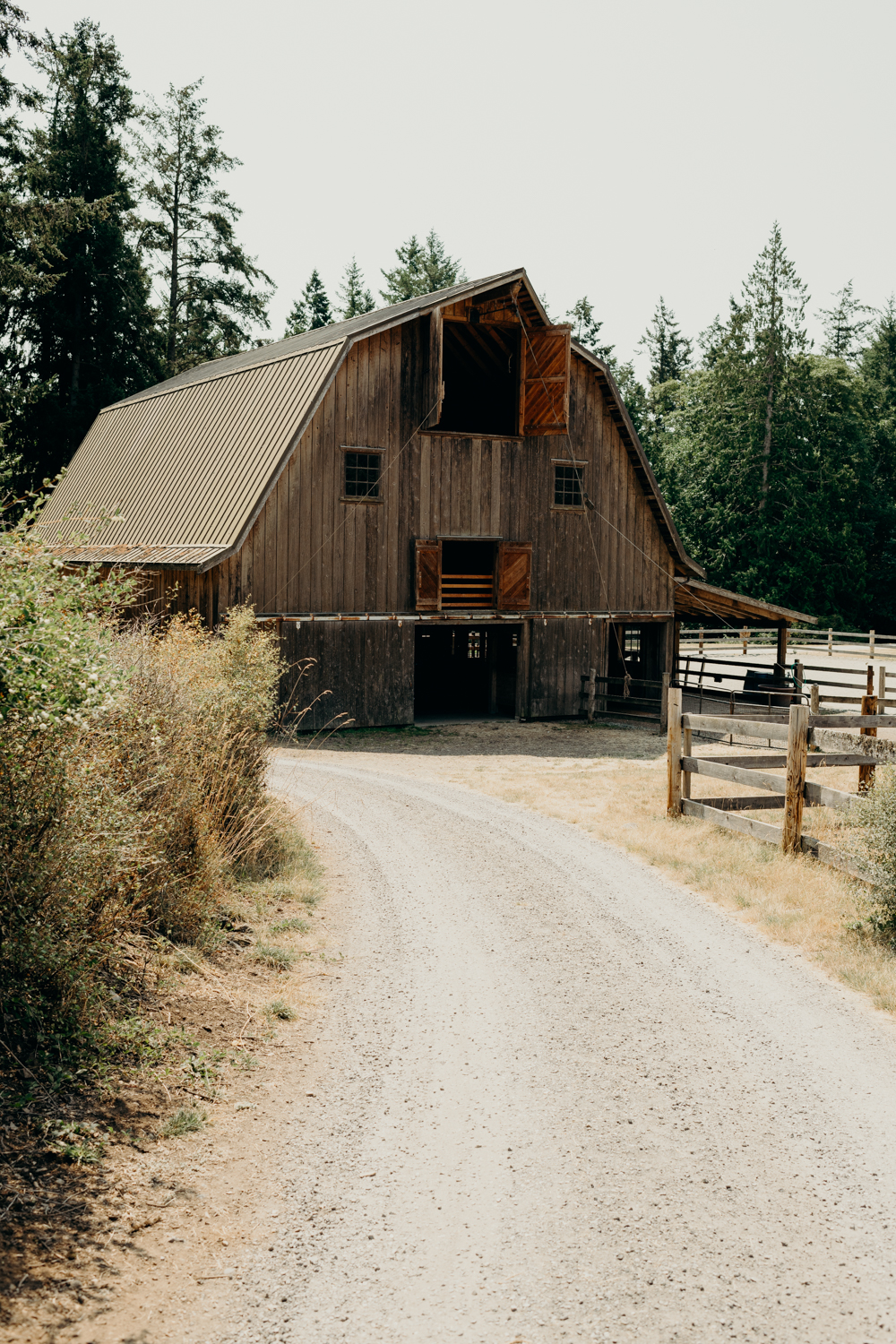 Turtlehead Farm Orcas Island Washington Wedding 4