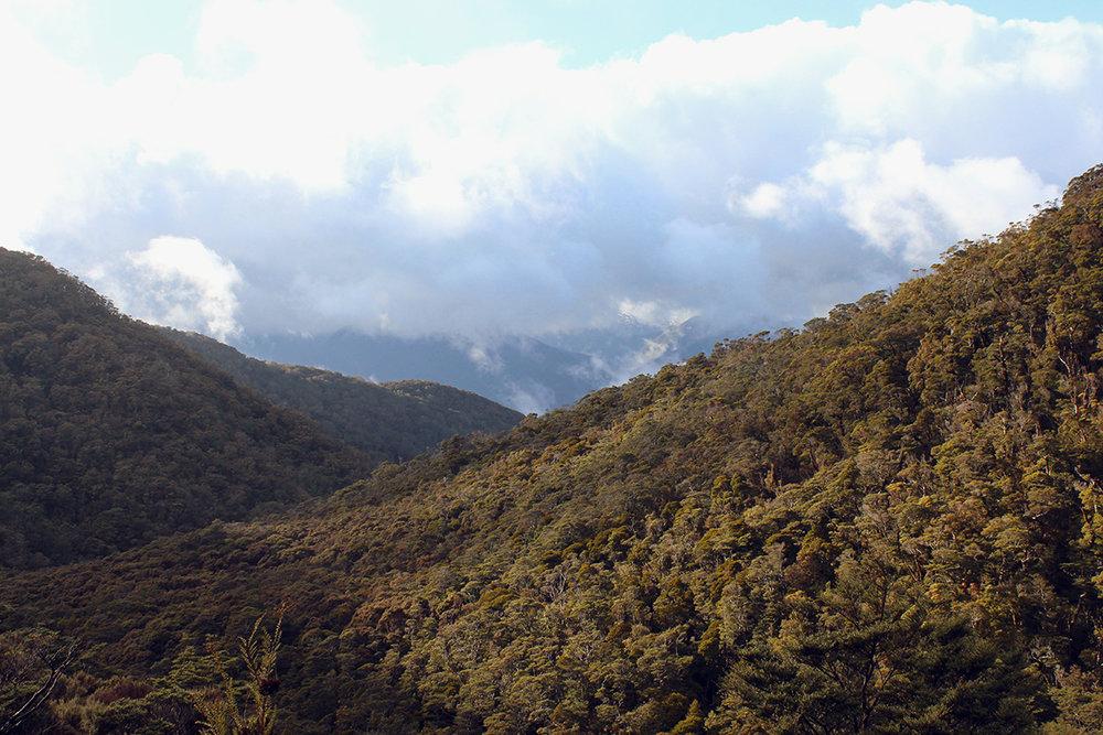 iamstingo-hiking2.jpg