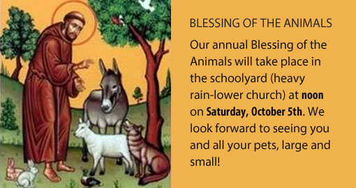 blessing-of-animals1