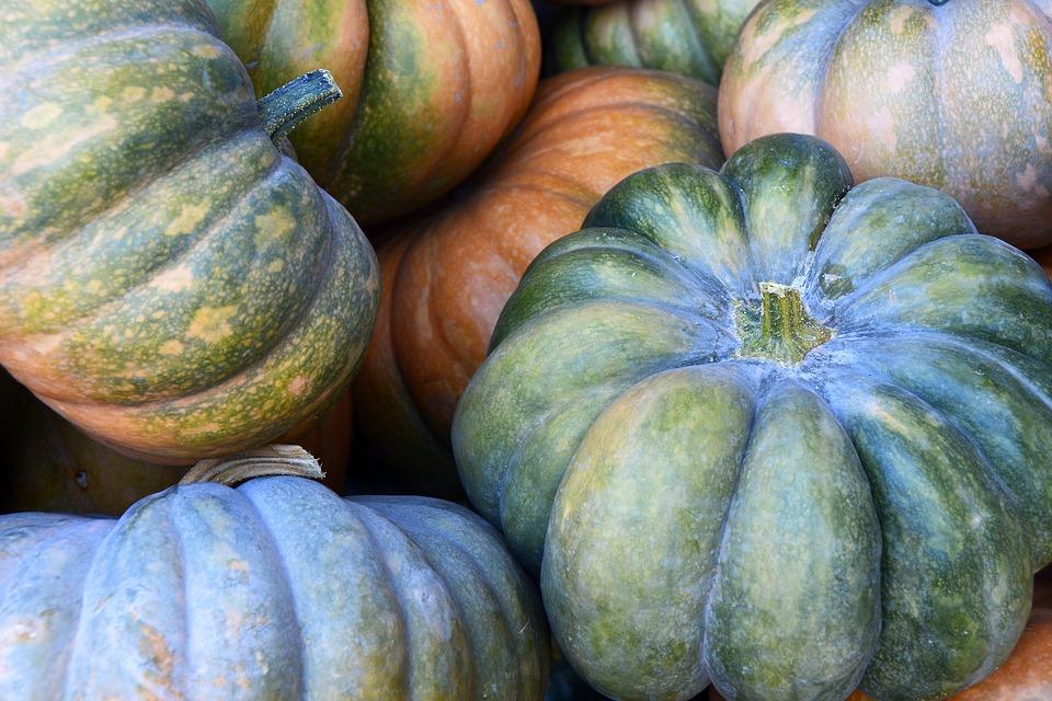 pumpkin-3680854_960_720.jpg