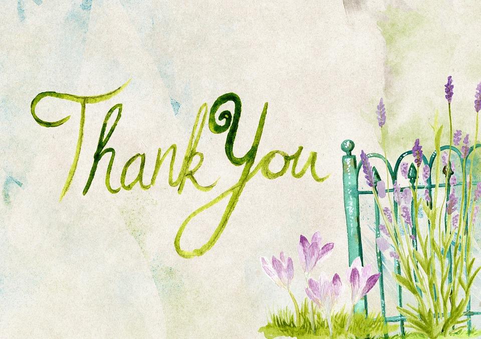 thank-you-944086_960_720.jpg