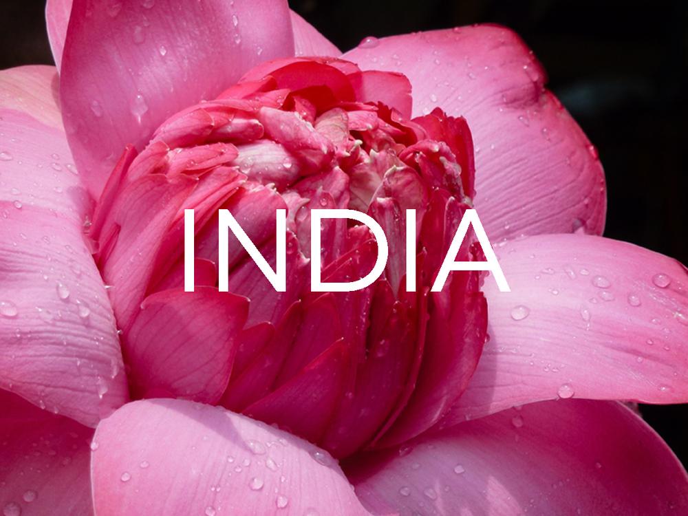 homepage_india1.jpg