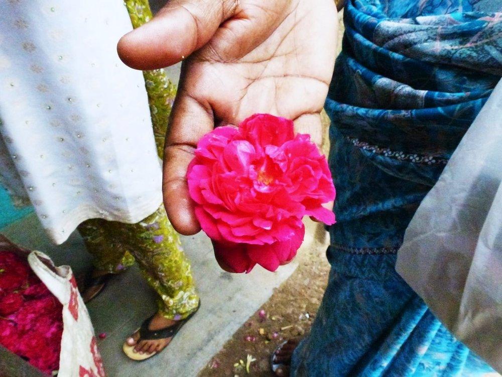 PhotoByJansi_India.jpg