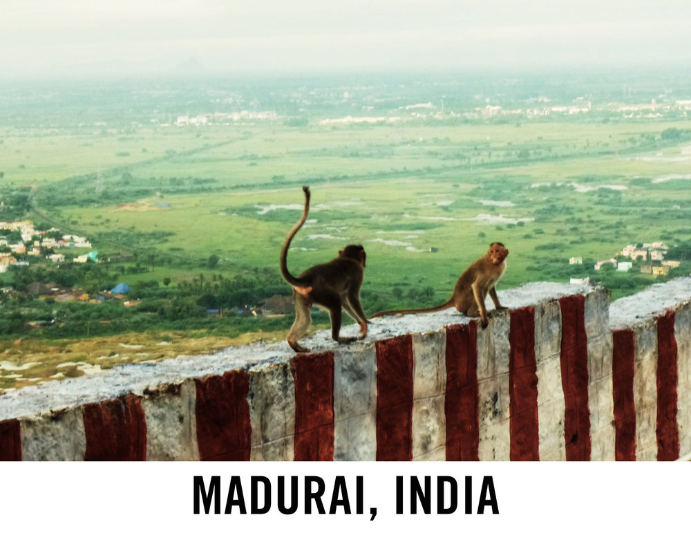 Madurai_WebGraphic2.jpg