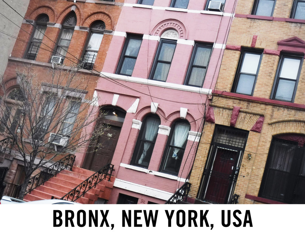 Bronx_Web Graphic.jpg