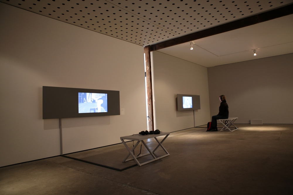 True Self: David Rosetzky Selected Works , 2013 (install)  Photograph: Maura Edmond
