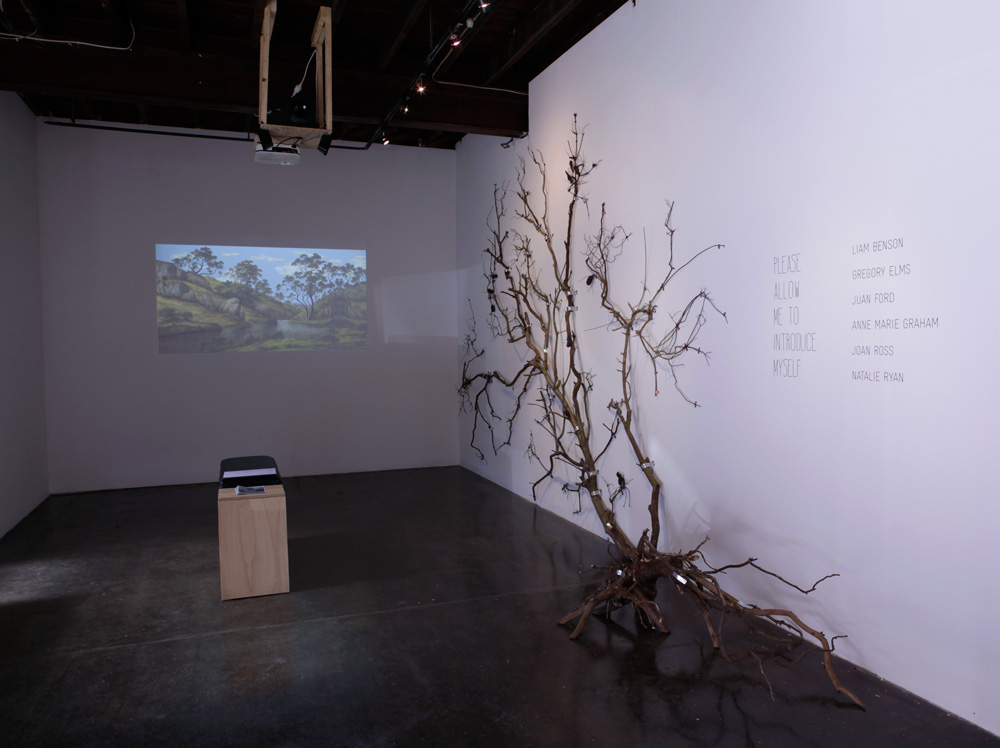 Please Allow Me to Introduce Myself , 2013 (install) Photograph: Maura Edmond