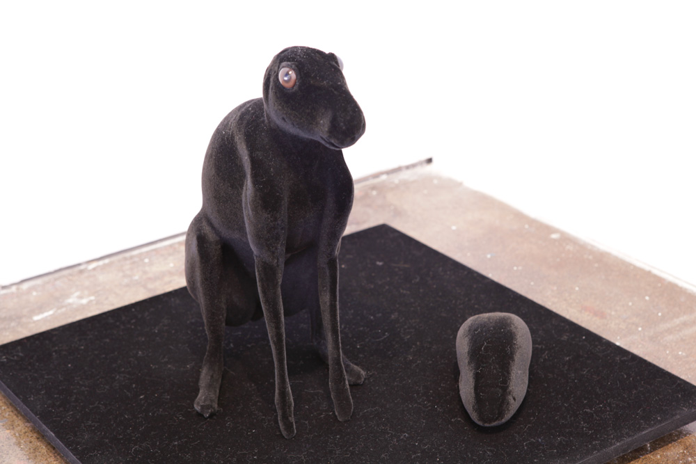 Natalie Ryan,  Devoid Matter (Black Hare)  , 2009 Photograph: Maura Edmond