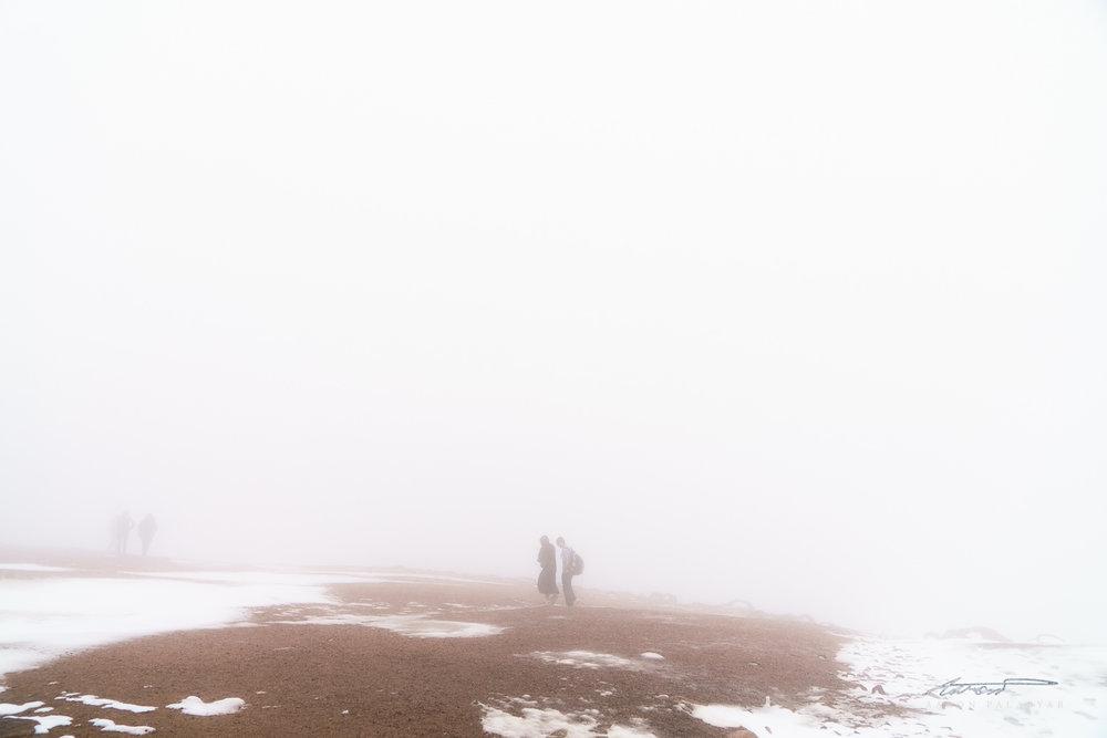 Strangers in the mist