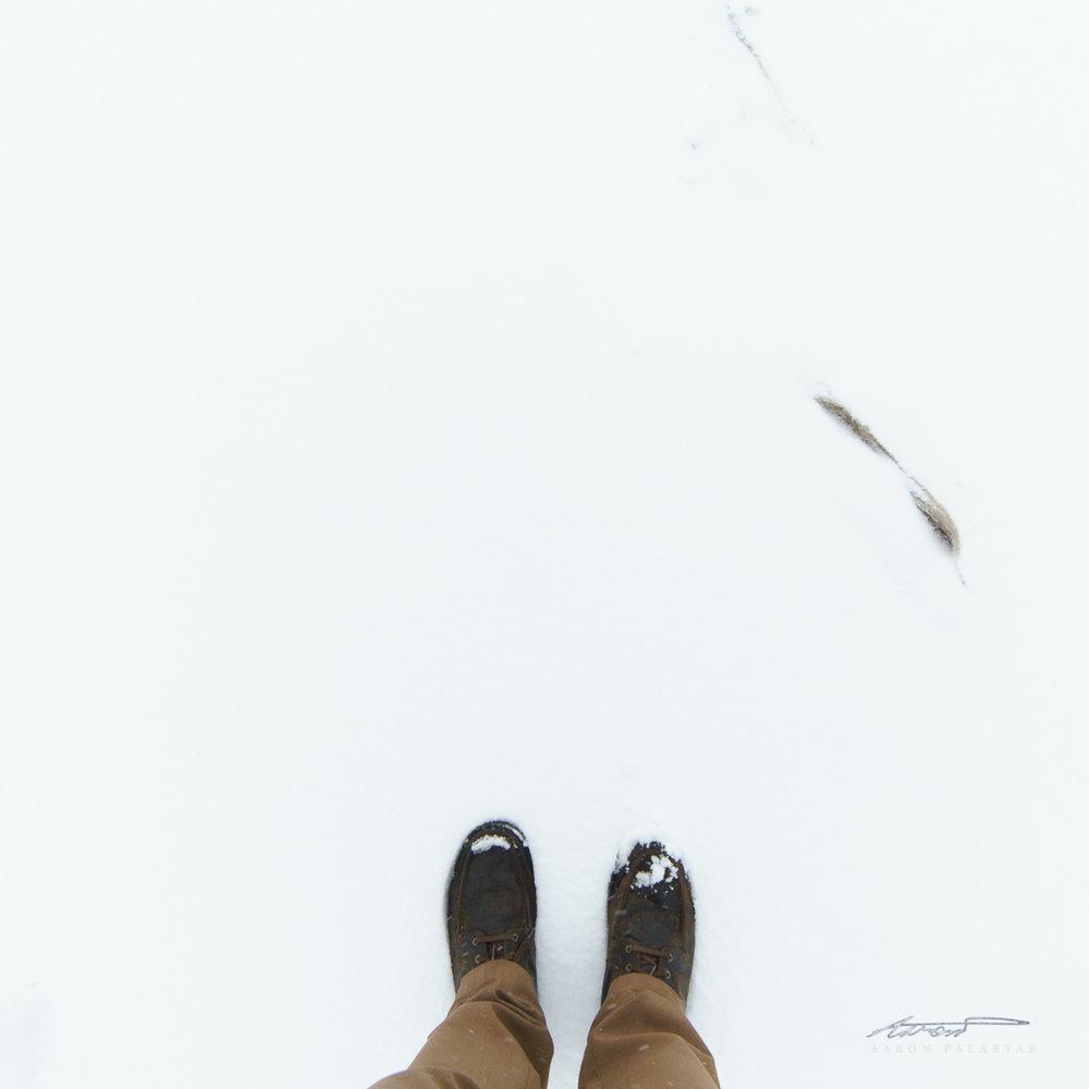 Snow = default minimalism