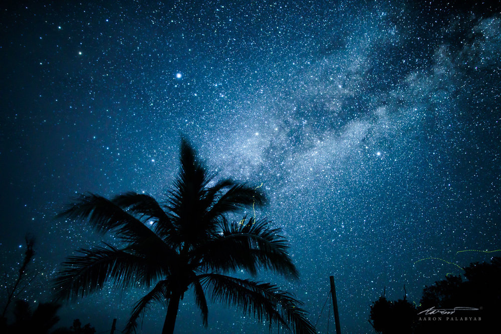 Tropic Starlight