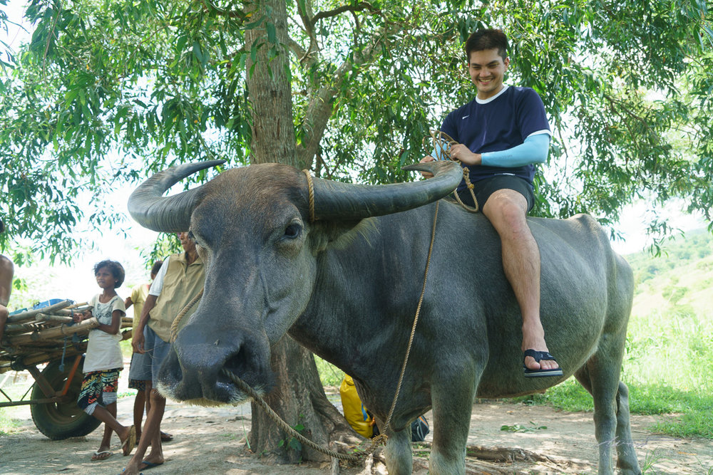 Enzo enjoying a ride on an uncooperative carabao