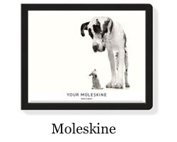 moleskine Photo book.jpg
