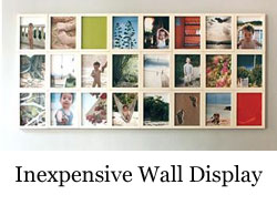 inexpensive wall display.jpg