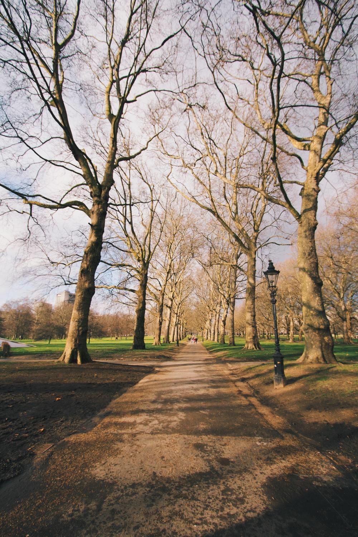 London2014 3.jpg