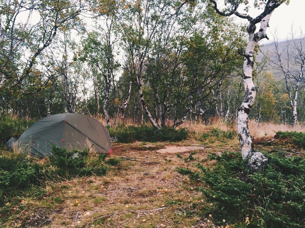 Platz für meine erste Nacht nach dem Abiskonationalpark