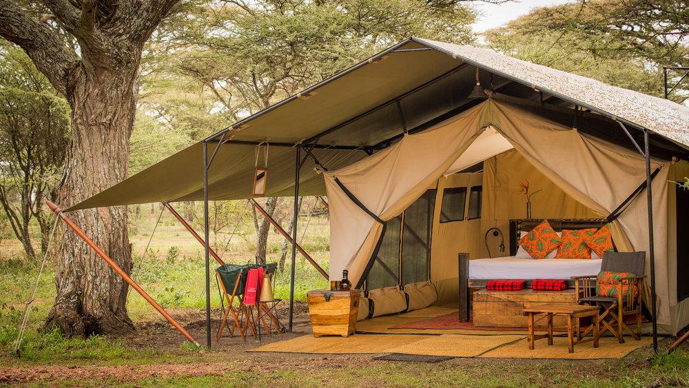 Dulana/Akiba Kibwe Serengeti