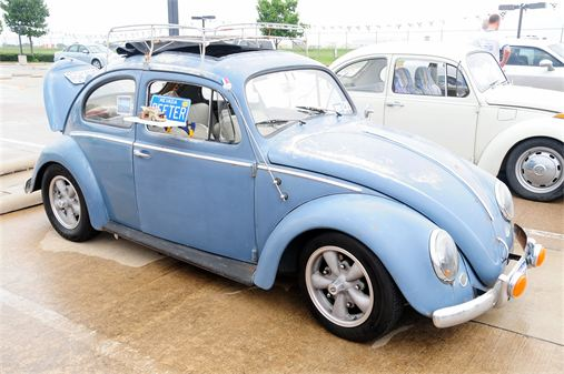 beetle_blue.jpg