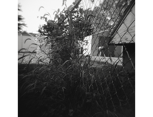 "Dogtown Backyard 2015 Inkjet Print from Film Negative 12"" x 12"""