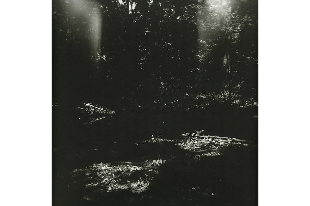 Untitled 3 - Dream Series  2015. Silver gelatin print on fiber-based paper. - 16x16""