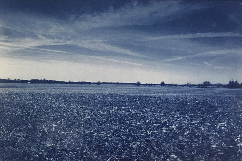 "Field and Sky  2016. Cyanotype on paper. - 12"" x 18"""