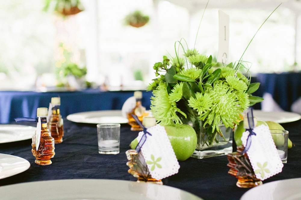 lynchburg-wedding-photographer_0021.jpg