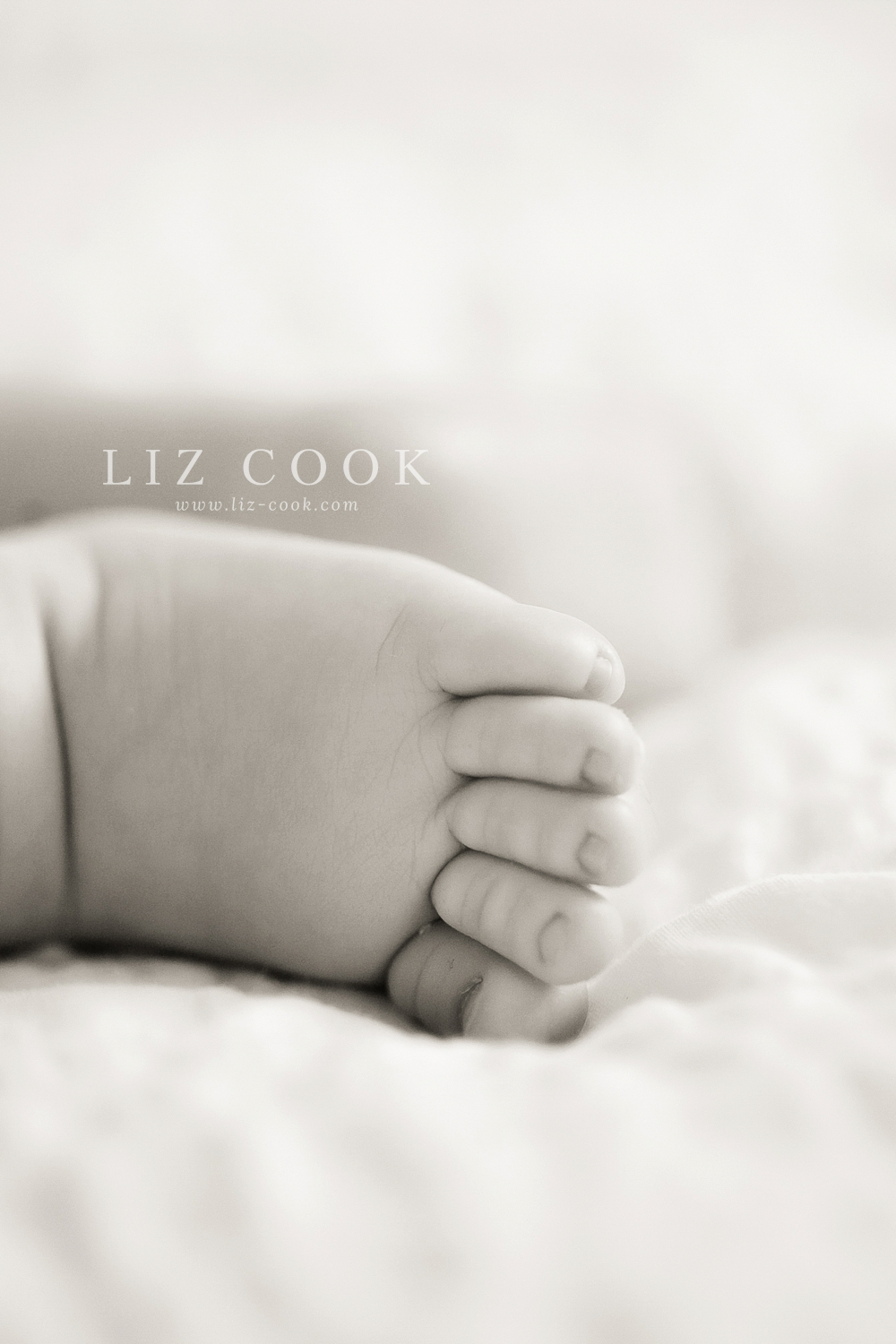 lynchburg_virginia_studio_newborn_session_0015.jpg