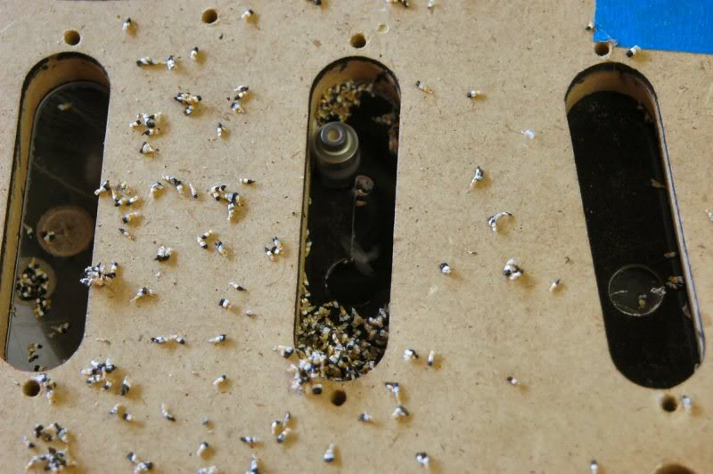 Now changing bit to a 3/8ths, simply because it will fit inside the ½ inch hole I have drilled, I cut the pickup holes.