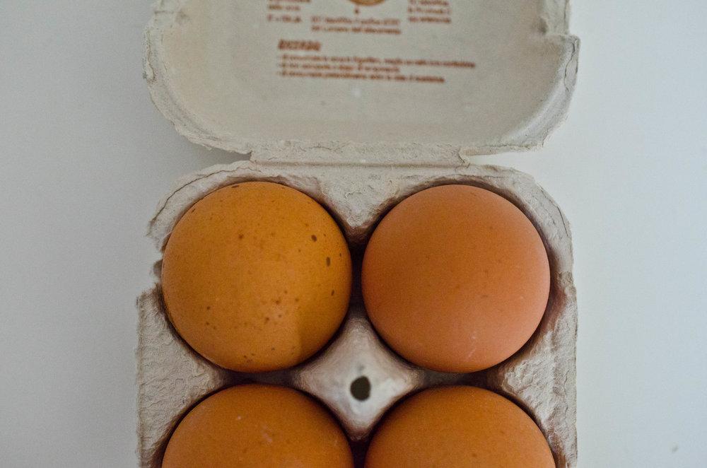 Fresh eggs always taste best.
