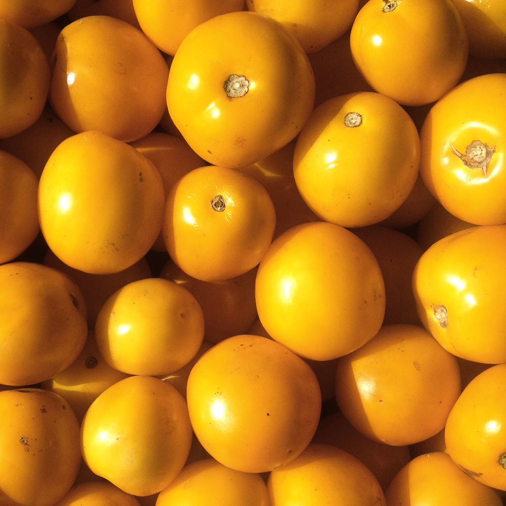 Golden regional tomatoes.