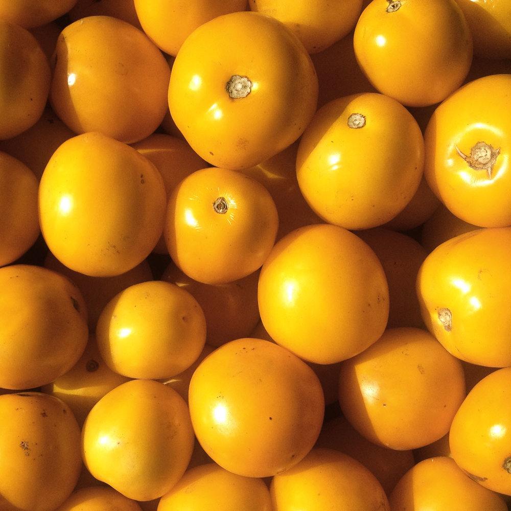 Golden regional tomatoes.