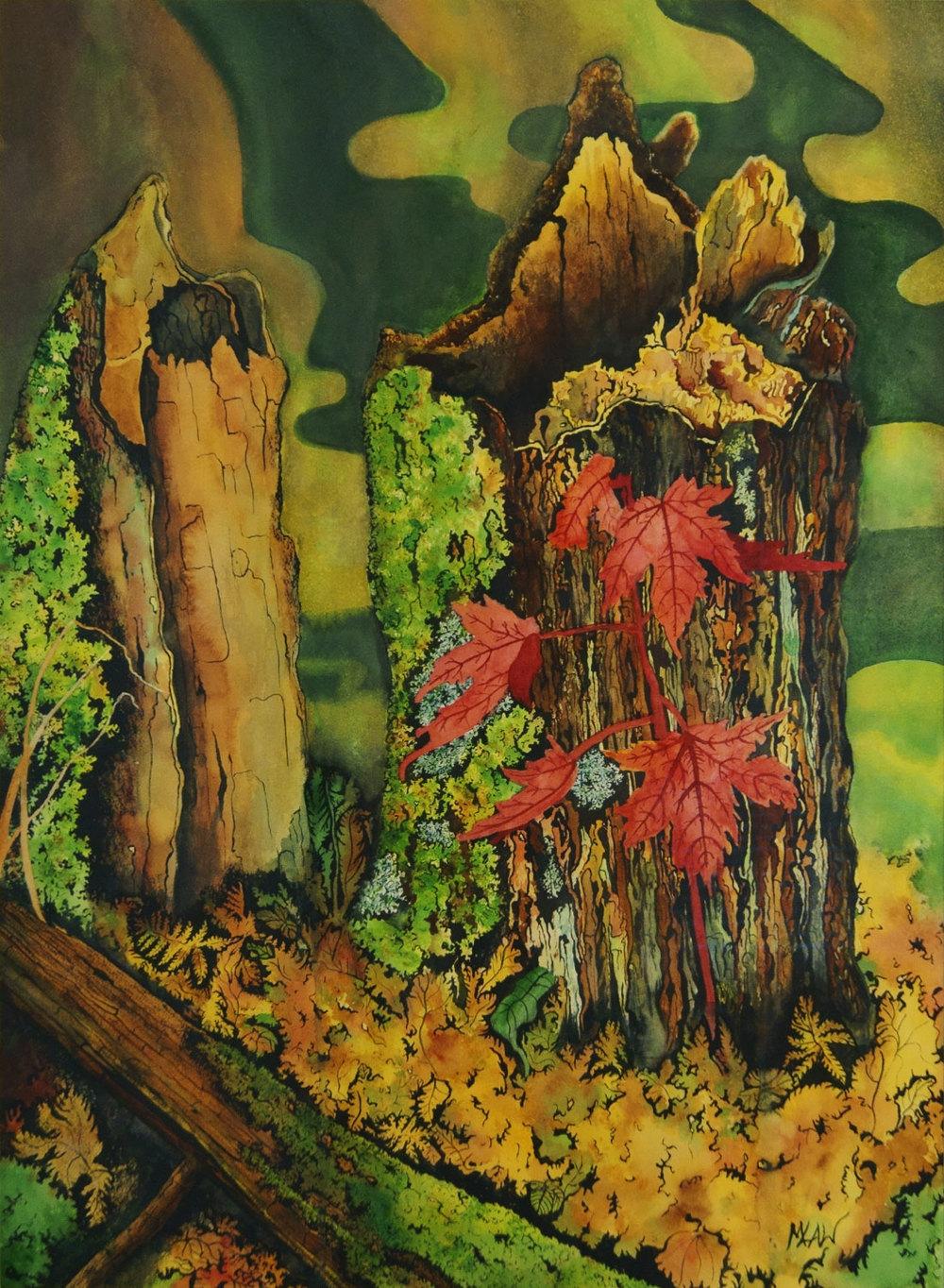 Nipkin Stump